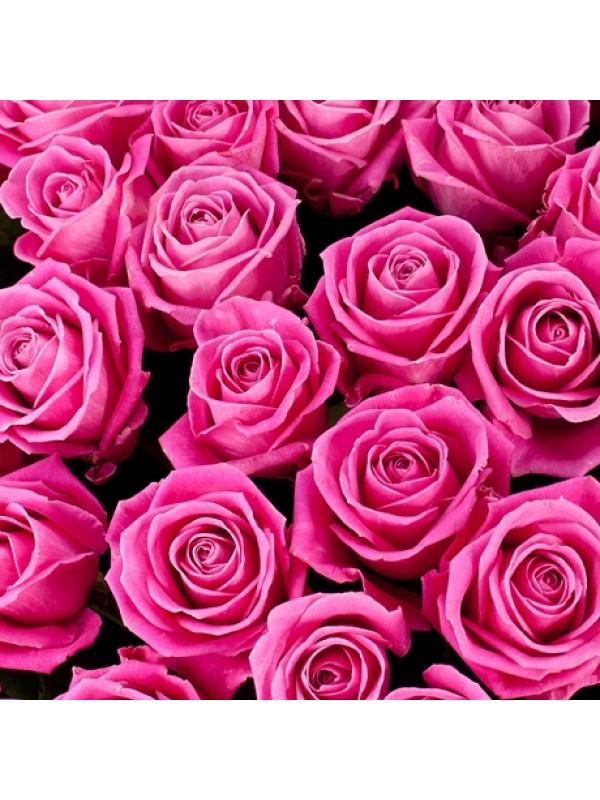 Поръчай Букет от 101 Розови Рози - най-евтина цена от 199.99