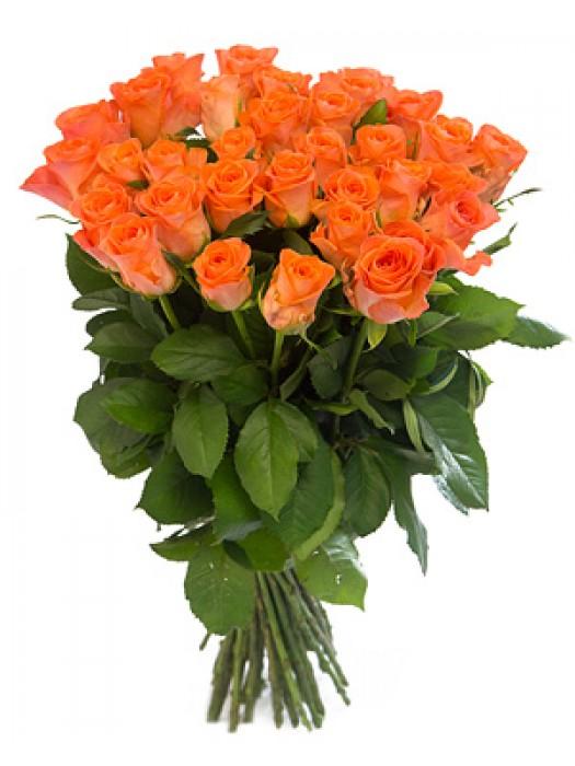 Букет от Оранжеви Рози на неверотната цена от 19.99 лв