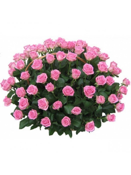 Поръчай Кошница 101 Розови Рози - безплатна доставка в София и Пловдив