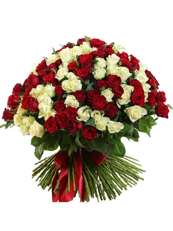 Букет от 201 Червени и Бели Рози - безплатна доставка в София и Пловдив