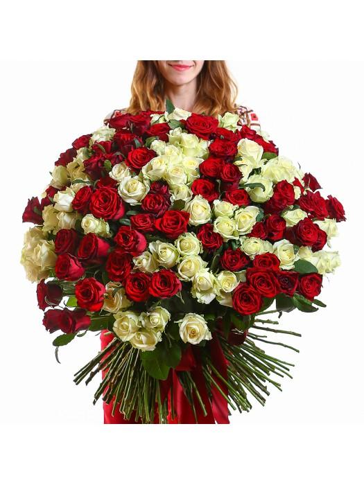 Букет от 201 Червени и Бели Рози