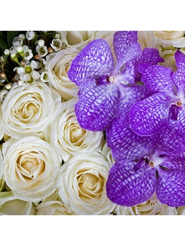Поръчай Сърце от 51 Бели Рози - безплатна доставка в София и Пловдив