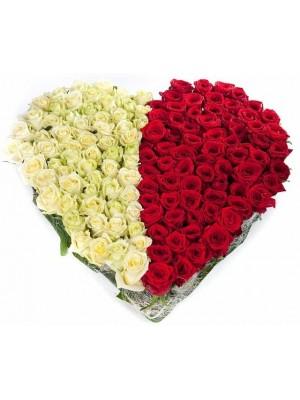 Сърце от 101 Бели и Червени Рози