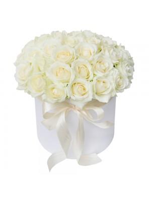 Бели рози в бяла кутия