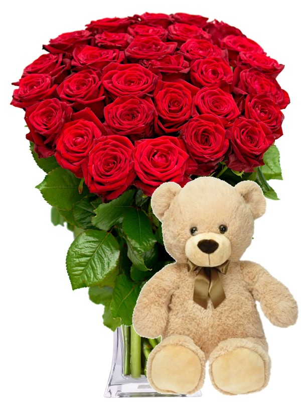 Red roses + teddy bear