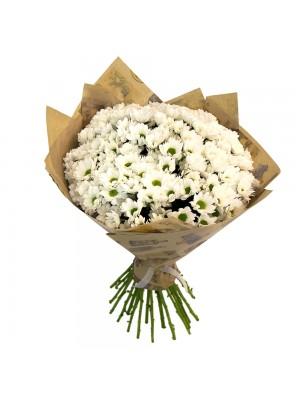 Букет от Бели Хризантеми с опаковка