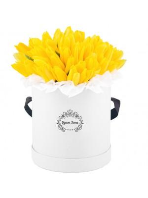 51 Жълти Лалета в кутия