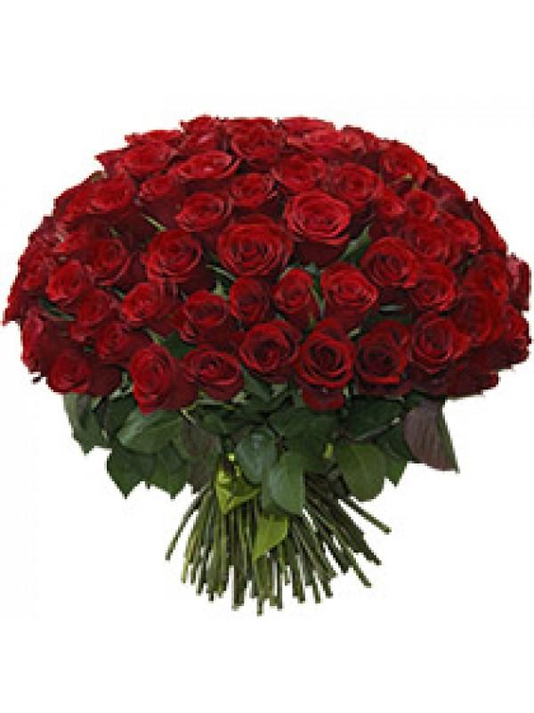 Доставка на цветя - Букет от 101 Червени Рози - на невероятна цена от 199.99 - 101 рози цена